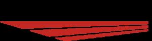 New Leader Logo