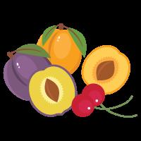 Stone Fruit Sustainability Index