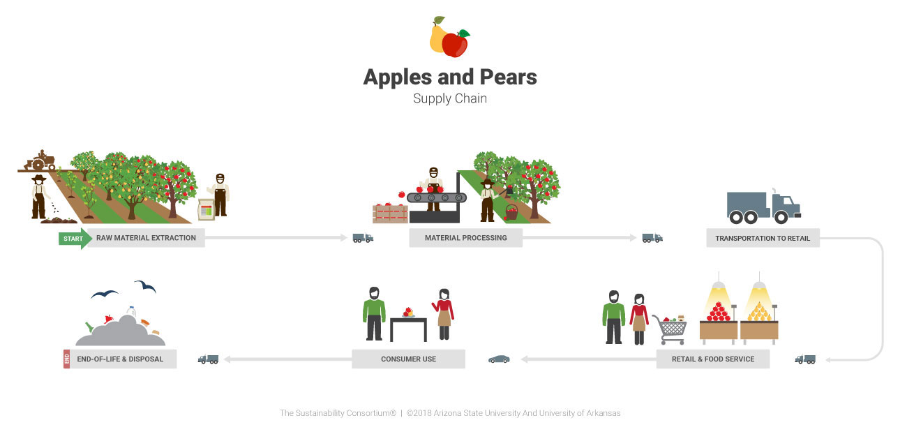 Apples Supply Chain Diagram